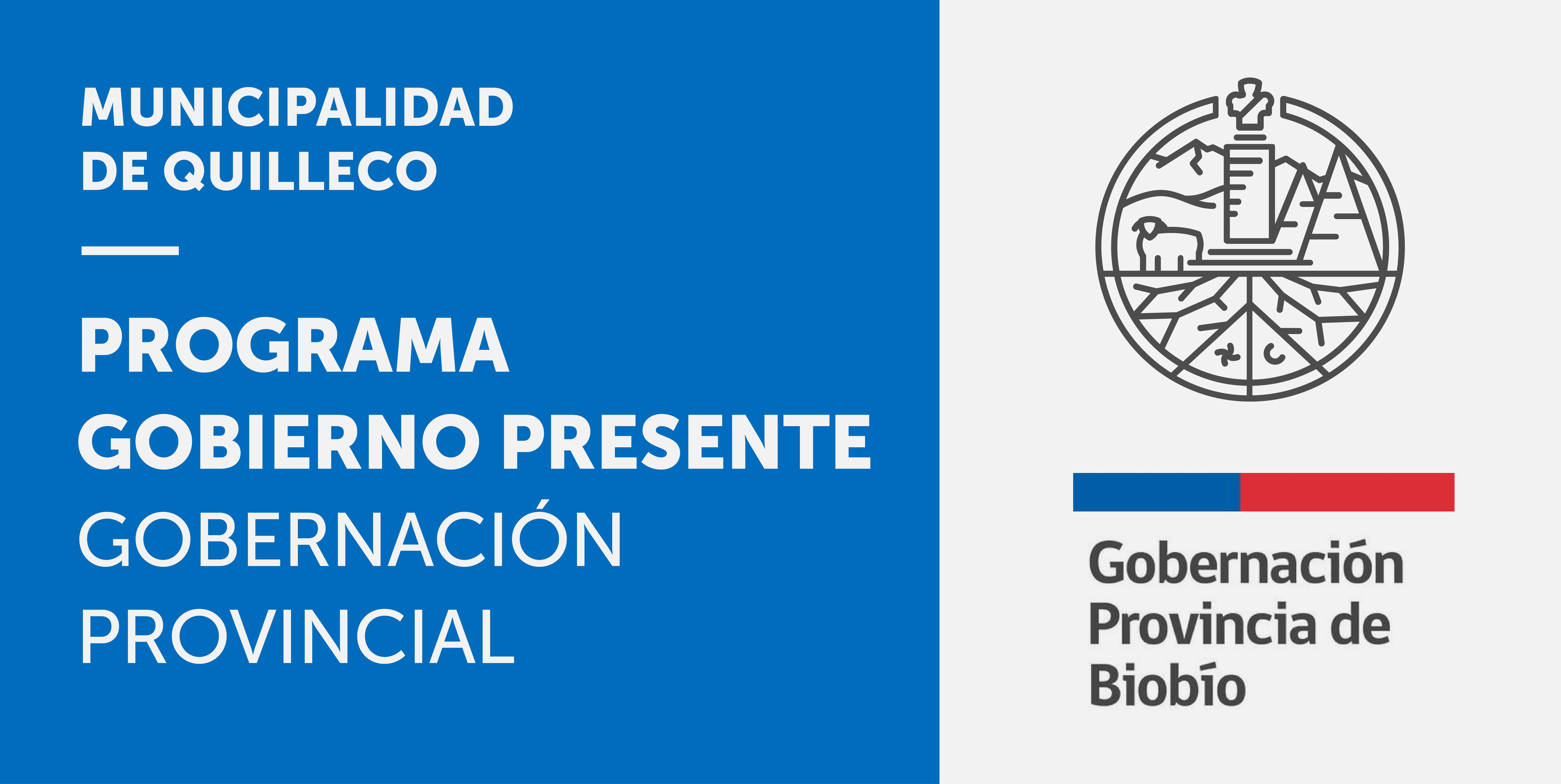 """Programa: """"Tu Gobierno Presente"""" de la Gobernación Provincial, en Municipalidad de Quilleco"""