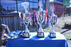 1 Campeonato de Rayuela JUL 2017-18