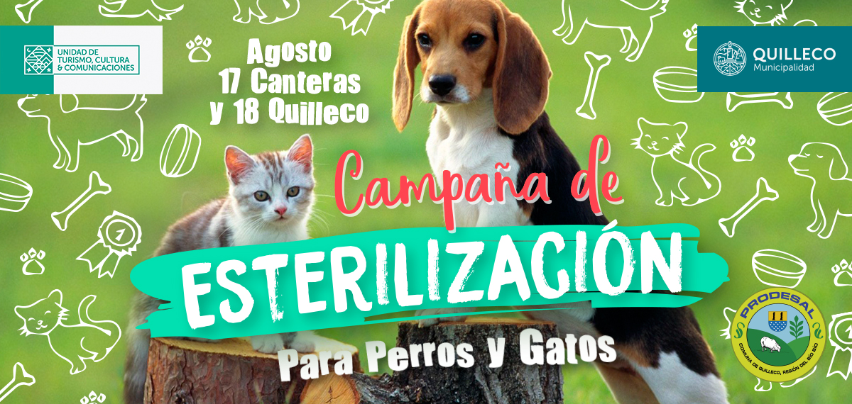 3ra Etapa de la Campaña de esterilización Canina – Felina