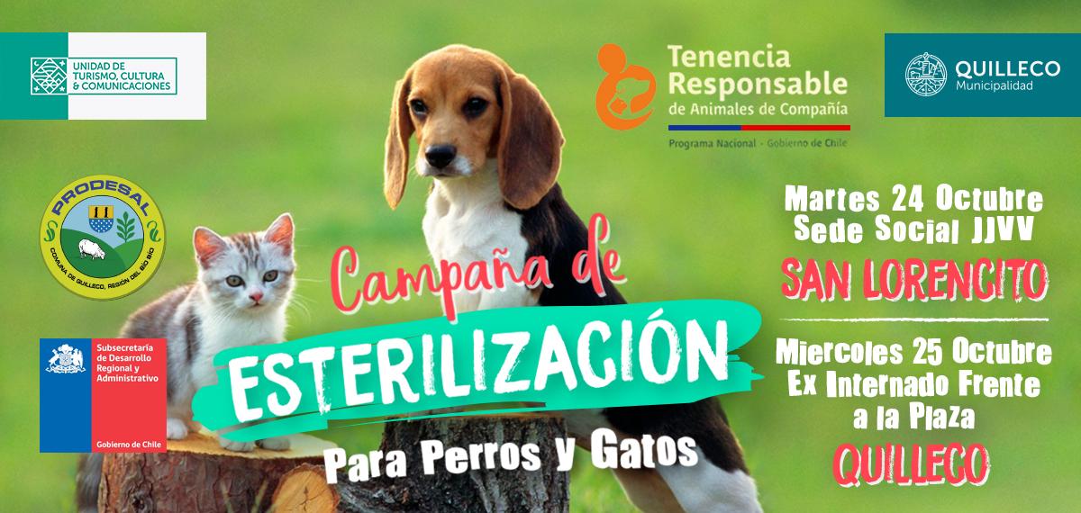 4ta Campaña de Esterilización Canina – Felina