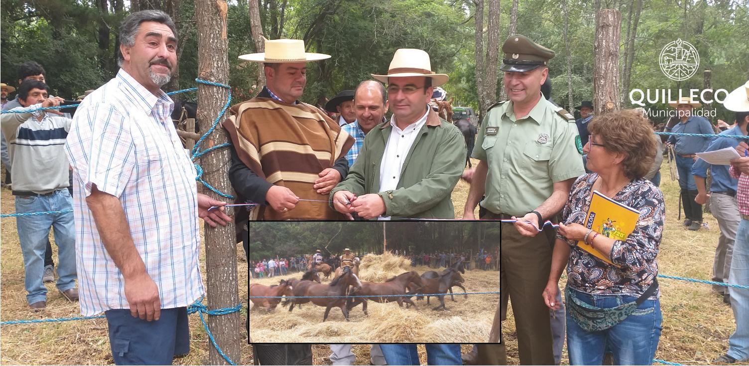 La Trilla a Yegua suelta rescatando las tradiciones del campo chileno