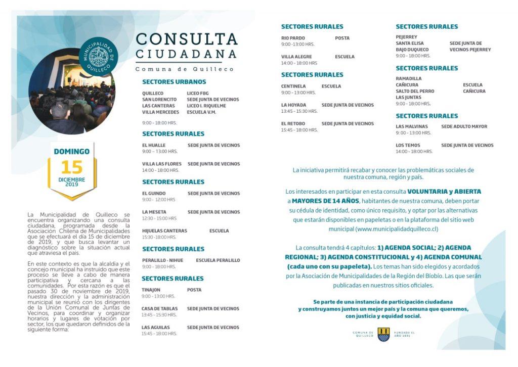 consulta ciudadana