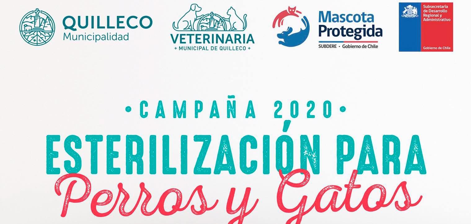 ÚLTIMOS CUPOS DE LA CAMPAÑA MUNICIPAL DE ESTERILIZACIONES DE MASCOTAS