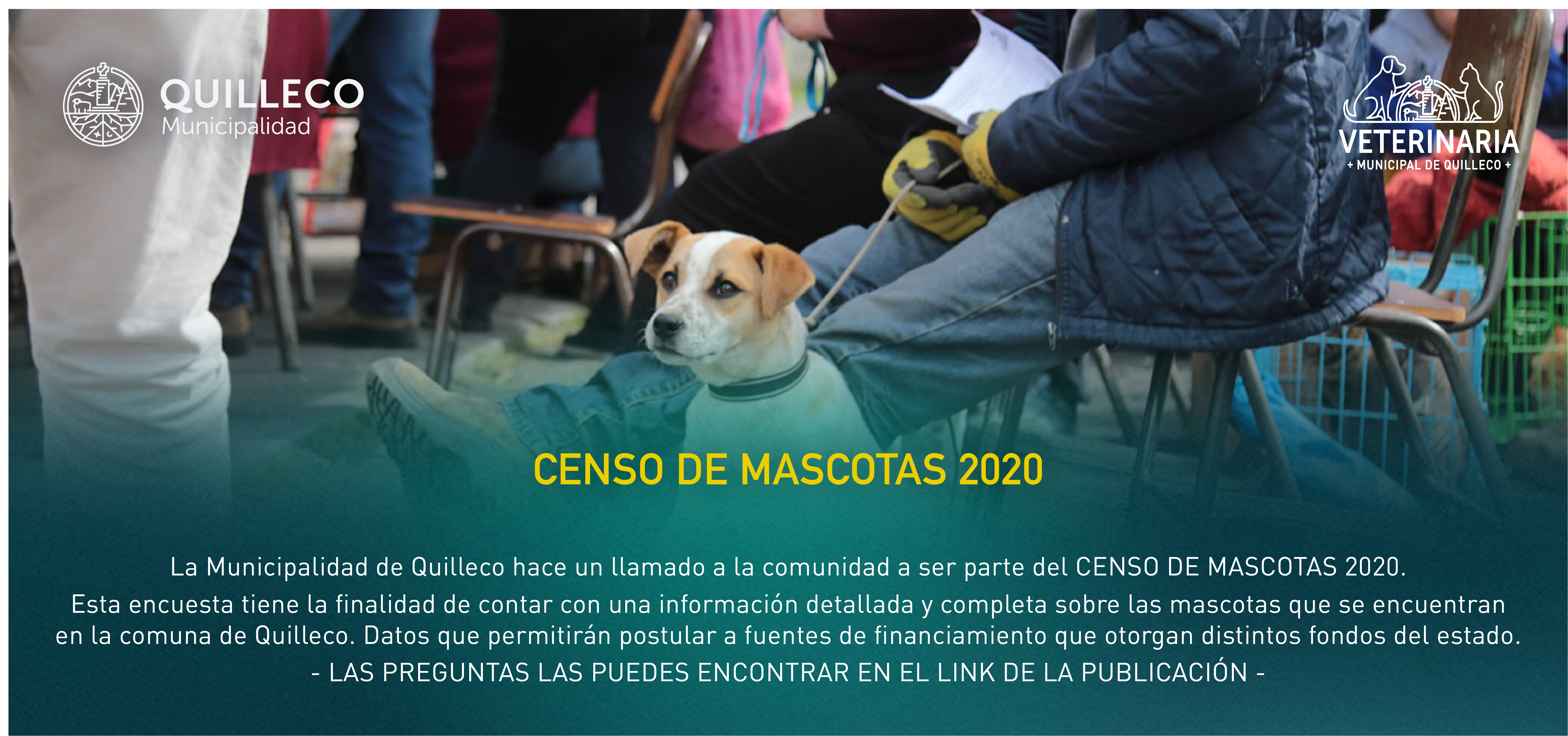 MUNICIPIO ENCABEZA PRIMER CENSO DE MASCOTAS DE LA COMUNA DE QUILLECO
